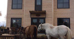 Domaine du Ranch